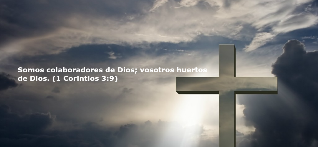 Banner Holy Cross 1080x470